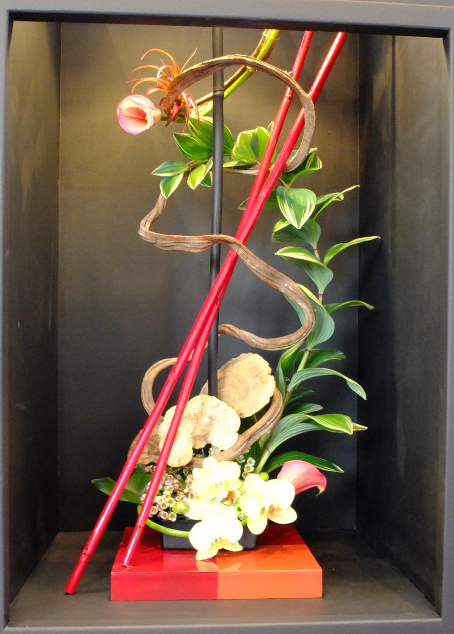 HANAMI A Flower Show Thomas Pappas Photography